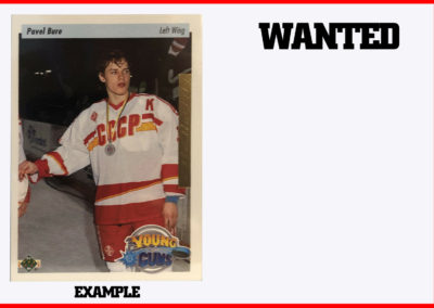 1995-96 Upper Deck Electric Ice Gold # 214